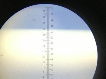糖度25.JPG